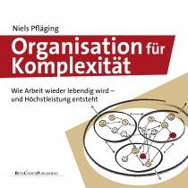 organisation_komplexität